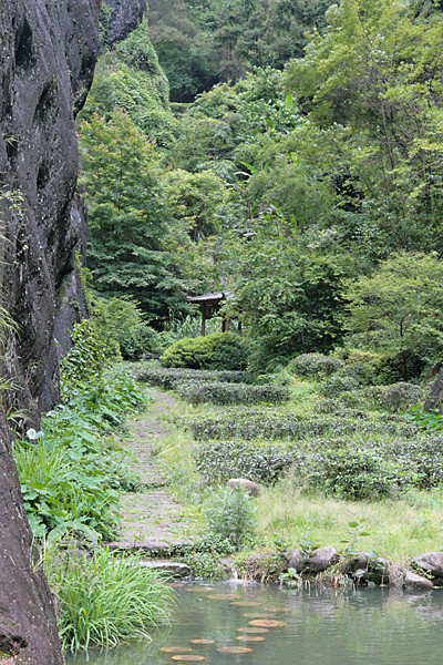 Meandering Path in the WuYi Shan