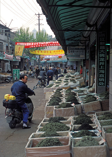 Window Shopping for Green Tea - Shanghai