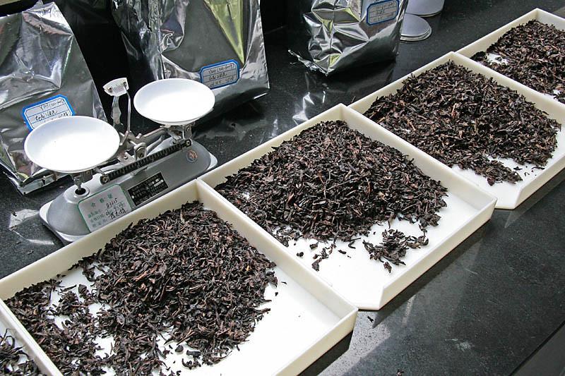 Evaluation of Semi-made Oolong Tea