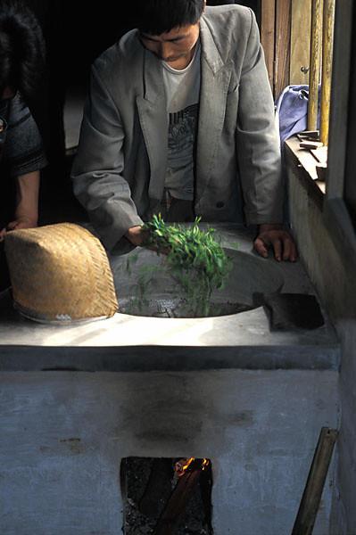 Firing Tai Ping Hou Kui Fresh Leaf