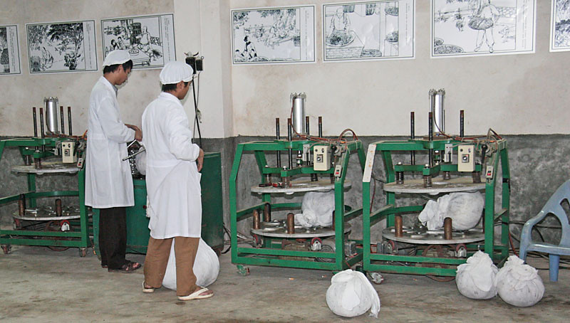 Rolling Machines for Semiball-Rolled Oolong