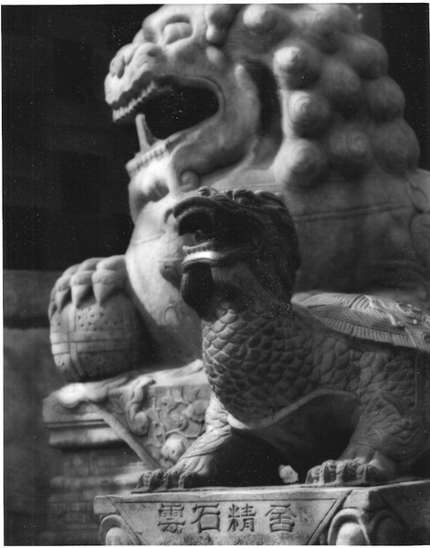Lion and Turtle in the Gu Gong (Forbidden City).