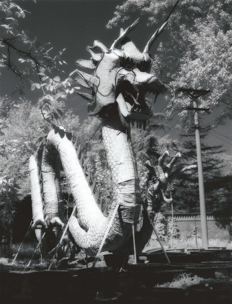 Dragon in storage, Beijing Language and Culture University, medium format Konica 750 film