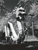 Dragon in storage, Beijing Language and Culture University, medium format Konica 750 film