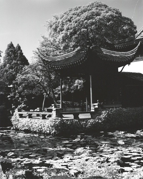 "Suzhou, Jiangsu Province, a restful spot for the ""Humble Administrator"" after a hard day's work. Shot with Rollei infrared film."