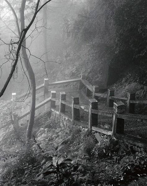 In Jiuhuashan, walking South from Baisuigong temple on a foggy morning