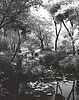 "Suzhou, Zhou Zheng Park. Called the ""Humble Administrator's Garden"" this little bit of heaven indicated that the Administrator was not terribly humble. Shot with Rollei infrared film."