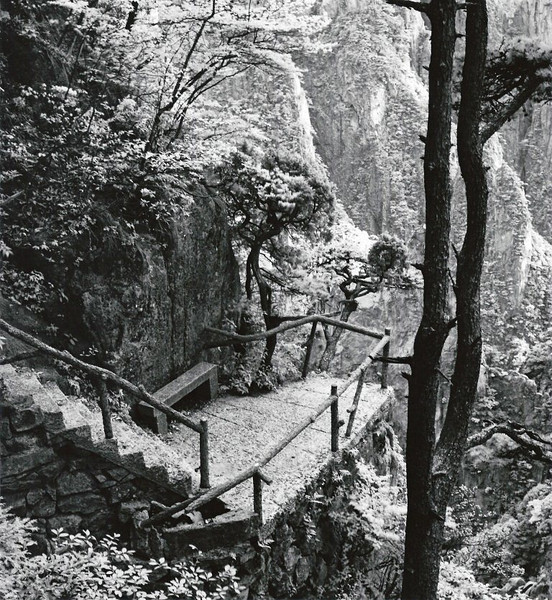 Huangshan, West Sea Canyon, Loop 1. Detail work in constructing the hiking paths shows tremendous effort to accomodate crowds of visitors while keeping a rustic appearance. Shot with Rollei infrared film.