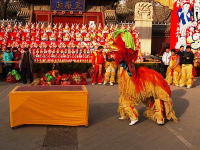春节2011 Chinese new year