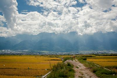 Fields outside of Dali, China