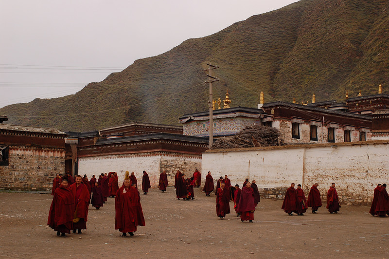 Monks streaming out of the morning prayer session