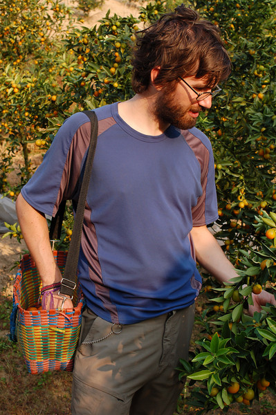 Yann is very selective about his orange picking
