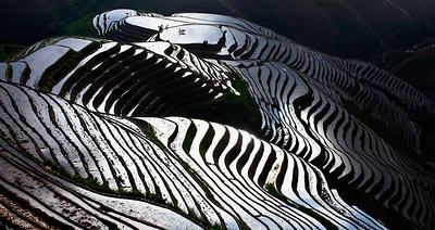 Longsheng Rice Terrace, Guilin