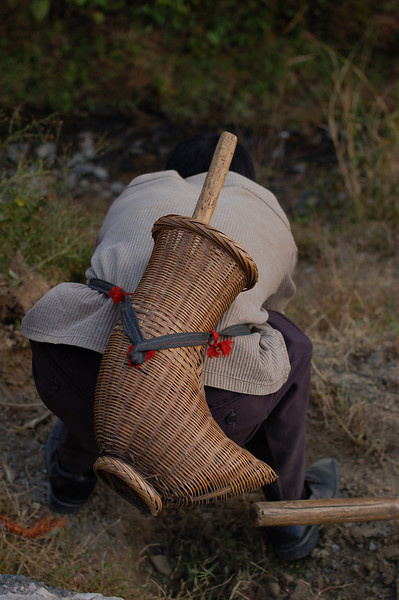 The traditional basket used to hold the crop cutting scythe