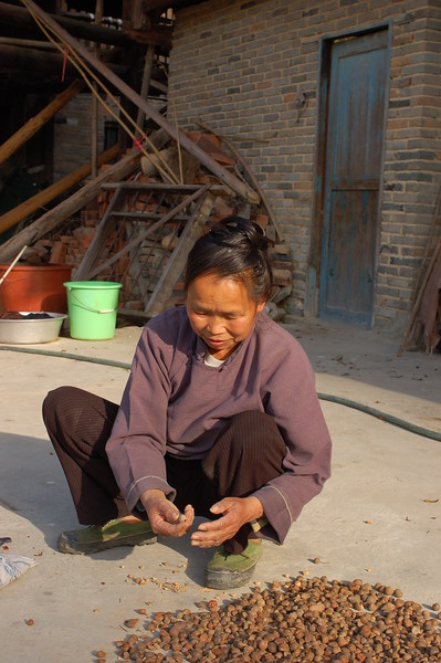 Sorting nuts in a small village outside Zhaoxing