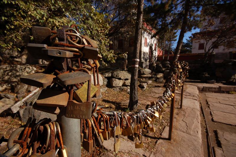 Puning Temple: Good luck locks