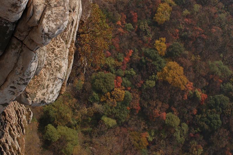Autumn colours of Song Mountain