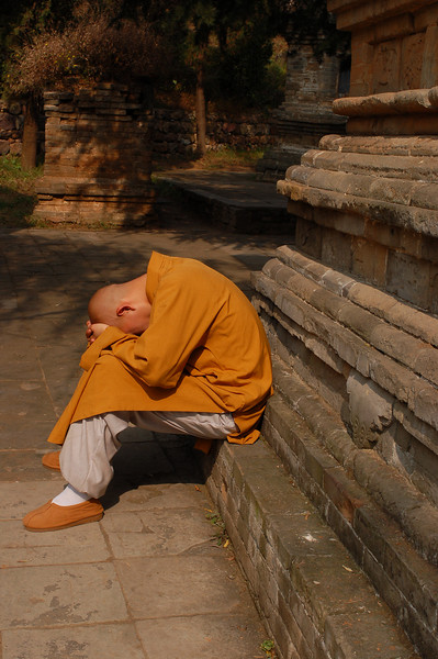 A monk resting in the peace and quiet of the Pagoda Forest