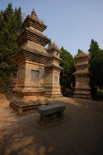 The Pagoda Forest