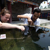 Emilie drops money into the water cauldron at the Dazhao Temple