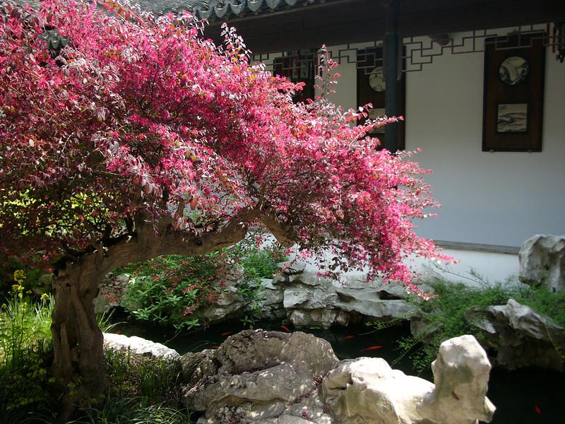 Zhong Wangfu (Prince Zhong's Residence) 忠王府