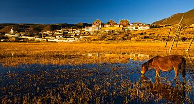 Song Jian Lin Monastery, Shangrila, Yunnan