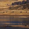Highland lakes Shangrila (92404754)