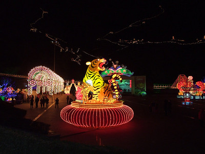 c'est l'année du Tigre!