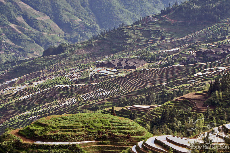 Longji Rice Terraces with Ping'An Village