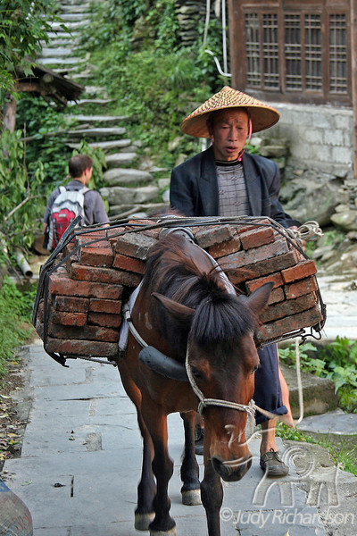 One of the modes of transportation of building supplies traversing the very steep hill