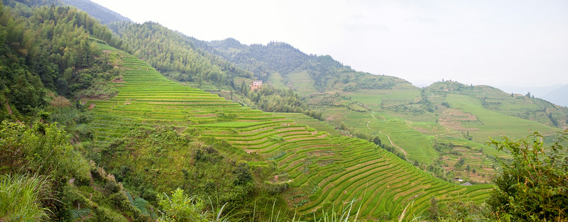 Longji Rice Terrace, China (龙胜梯田)