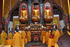 Buddhist Monks gathering for worship in temple with 3 giant Buddhas gilded in Gold