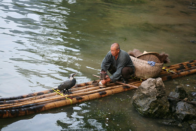 Fisherman and Bird, Lijiang River, Yang Shuo, China