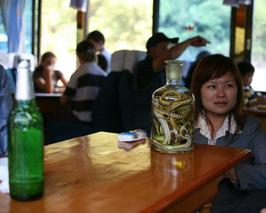 Snake Bile Wine, Lijiang River Boat, China