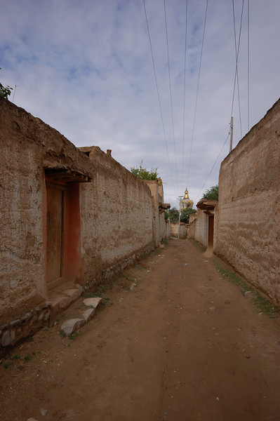 The village surrounding Gomar Gompa