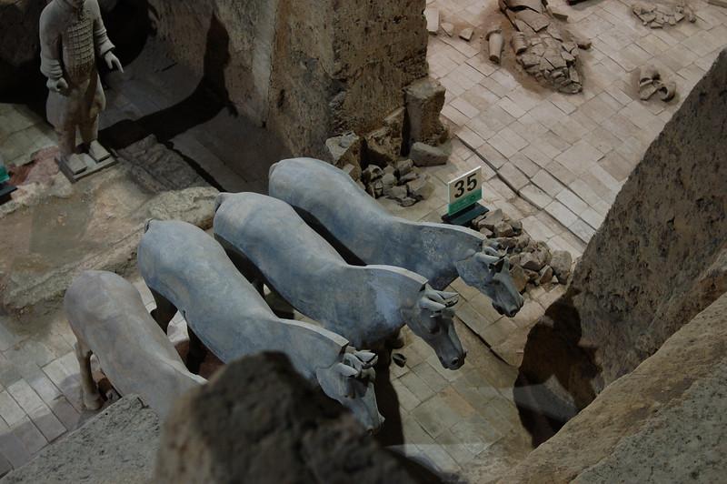 The terracotta horses, Pit 3