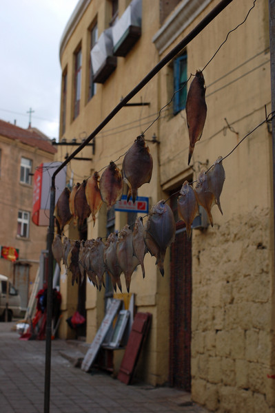 Fish drying in the old town
