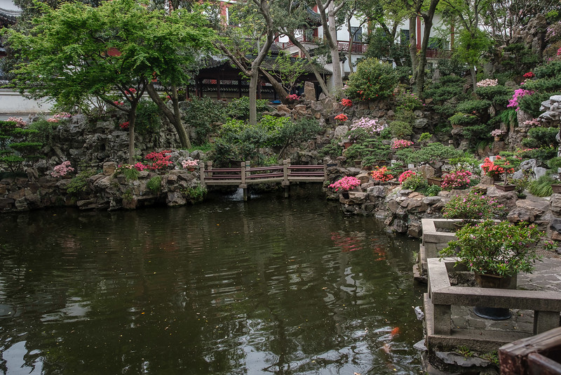 Pond and Flowers, Yu Garden