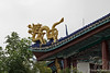 Golden dragon on roof of the pagoda