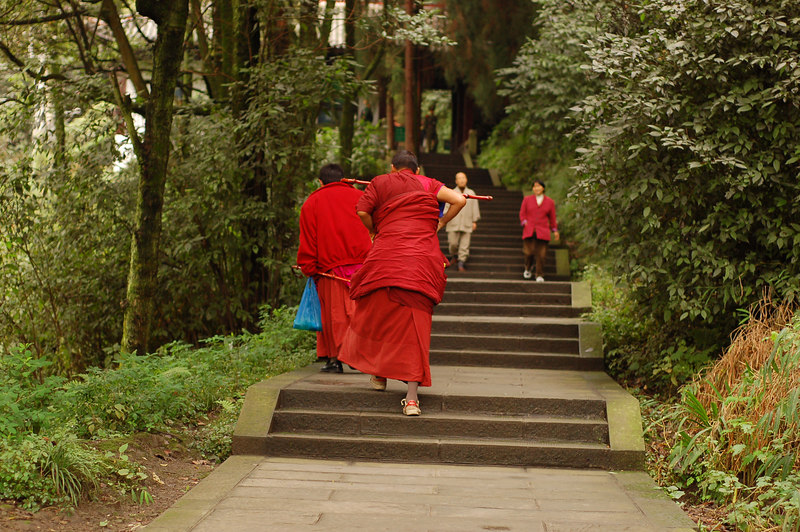 Day 1: Buddhist pilgrimmage