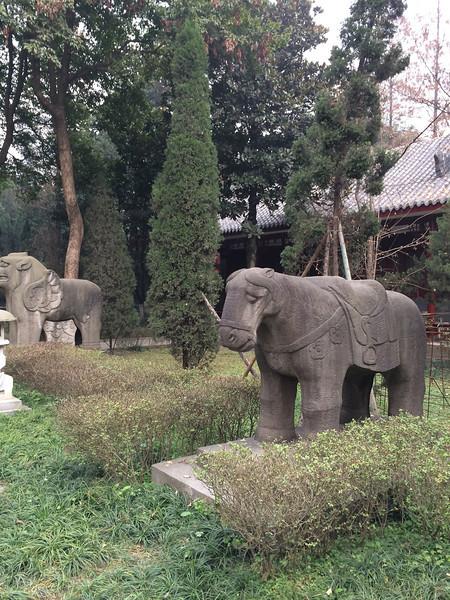 Sichuan201312-176
