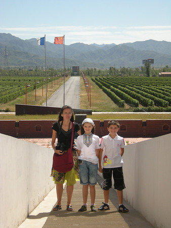 Sino French Wine Domain 0909