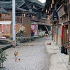 "Rainy street scene with chickens<br /> <br /> Shiqiao Miao Village, Guizhou Province, China<br /> <br /> 02/10/15  <a href=""http://www.allenfotowild.com"">http://www.allenfotowild.com</a>"