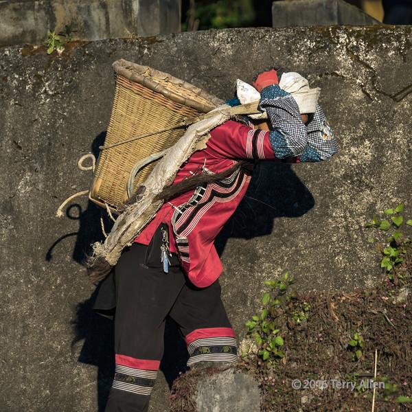 Woman-labourer-in-a-red-top,-Malizai-area,-Yuanyang-County,-Yunnan-Province,-China