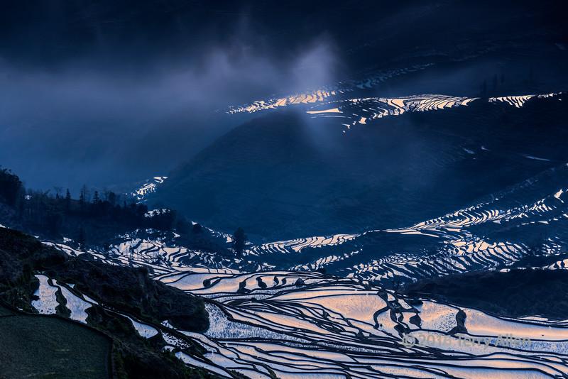 Rice-terrace-reflecting-the-sunrise,-Duoyishu,-Yuanhang-County,-Yunnan-Province,-China