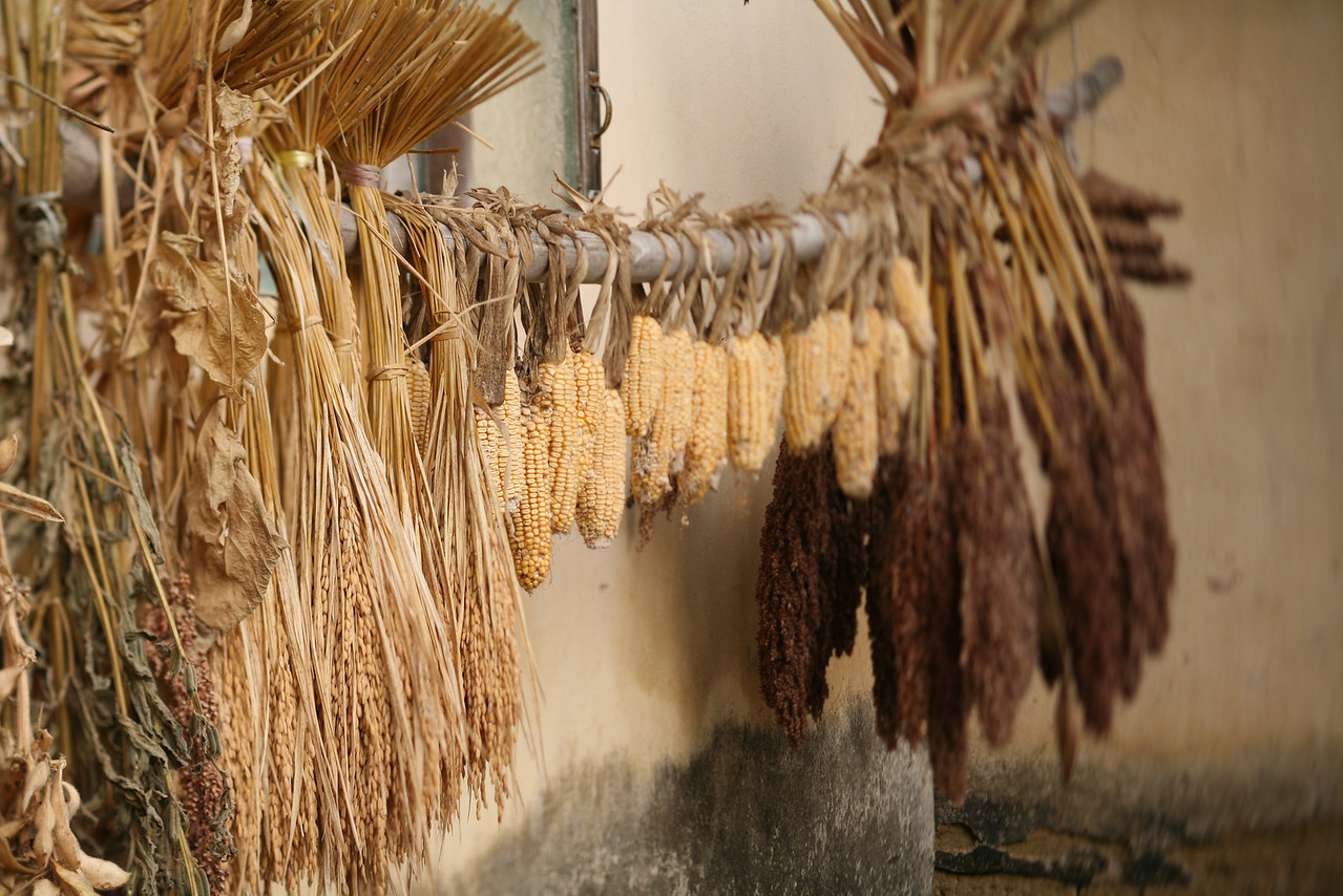 Drying Grains, Yang Shuo, China