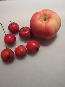 """petites """"pommes"""" acides comme des citrons!"""