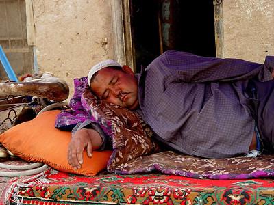 Sleeping donkey cart driver Kashgar DSC01627
