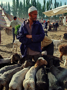 Sheep seller Kashgar Bazaar DSC01824