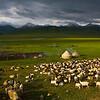 Bayanbulak Grasslands XinJiang China (63503634)